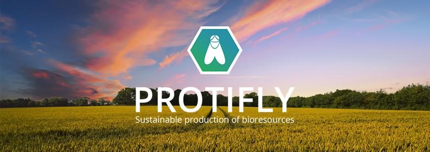 Comment Protifly valorise des résidus organiques grâce aux insectes ?