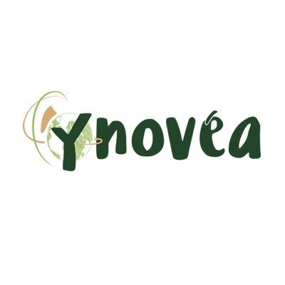 Ynovea